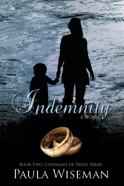 indemnity cover